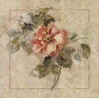 Provence Rose II Fine-Art Print