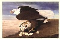 Bald Eagle W Goose Fine-Art Print