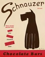 Schnauzer Bars Fine-Art Print