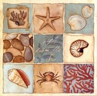 Coastal Collage I Fine-Art Print