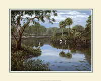 Three Cranes Swamp Fine-Art Print