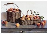 Summer Peaches Fine-Art Print