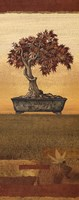 Bonsai IV - Mini Fine-Art Print