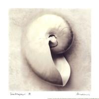 Sea Shapes III - Mini Fine-Art Print