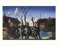 Swans Reflecting Elephants, c.1937 Fine-Art Print