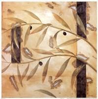Olive Branch I Fine-Art Print