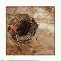 Nest Red Leaf Fine-Art Print