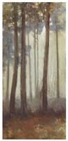 Silver Trees I Fine-Art Print