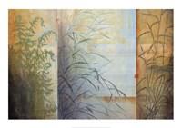 Ferns & Grasses Fine-Art Print