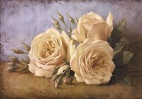 Roses From Ivan Fine-Art Print