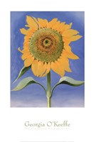 Sunflower, New Mexico, 1935 Fine-Art Print