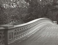 Central Park Bridge Fine-Art Print