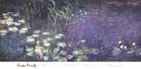 Water Lilies: Morning Fine-Art Print