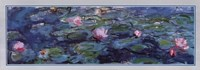 Water Lilies (Detail) Fine-Art Print