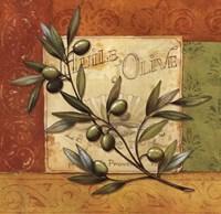 Olives du Midi I Fine-Art Print