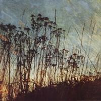 Wild Grass I Fine-Art Print