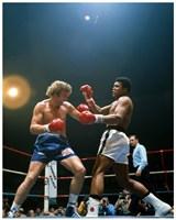 Muhammad Ali vs. Joe Bugner #288 Fine-Art Print