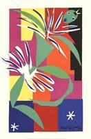 Creole Dancer Fine-Art Print