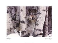 Mountain Ranger Fine-Art Print