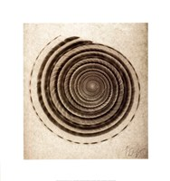 Sundial Shell Fine-Art Print