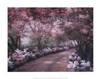 Azalea Walk Fine-Art Print