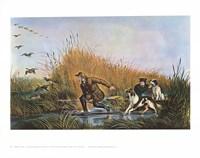 Wild Duck Shooting Fine-Art Print