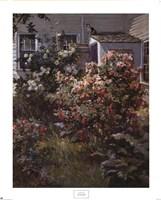 Backyard Garden Fine-Art Print