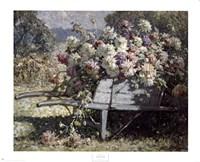 Barrow of Blooms Fine-Art Print