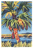 Pine Island Palm Fine-Art Print