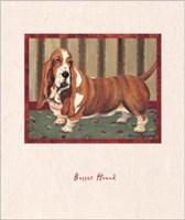 Bassett Hound Fine-Art Print
