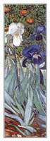 Irises in the Garden, Saint-Remy, c.1889 (detail) Fine-Art Print