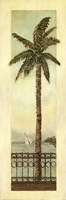 Cayman Palm II Fine-Art Print