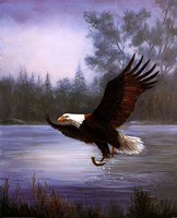 Eagle Fishing Fine-Art Print