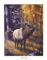 Bull Elk Fine-Art Print