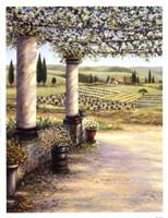 II Trebbio West Fine-Art Print
