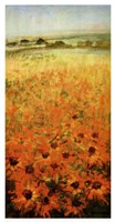 Field With Sunflowers Fine-Art Print