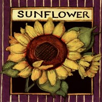 Sunflower Seed Packet Fine-Art Print