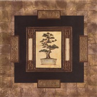 Art Of Bonsai I Fine-Art Print