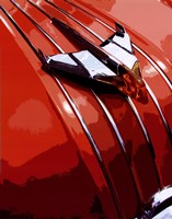Tail Fins And Two Tones V Fine-Art Print