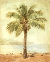 Mirage Palm II Fine-Art Print
