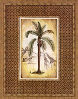 South Palm IV Fine-Art Print