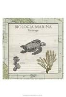 Biologia Marina IV Fine-Art Print