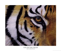 Eye of the Tiger Fine-Art Print