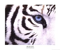 Blue Eye Fine-Art Print