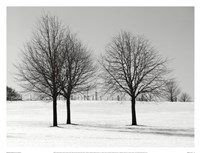 Silhouettes Of Winter I Fine-Art Print