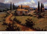 Italian Cypress Fine-Art Print