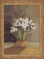 Symphony In White II Fine-Art Print