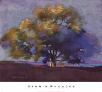 Twilight Oak III Fine-Art Print