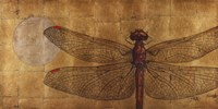 Dragonfly On Gold Fine-Art Print