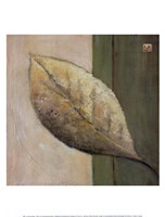 Leaf Impression - Olive Fine-Art Print